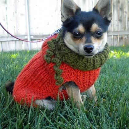 Lil Pumpkin Dog Sweater Knitting Pa..