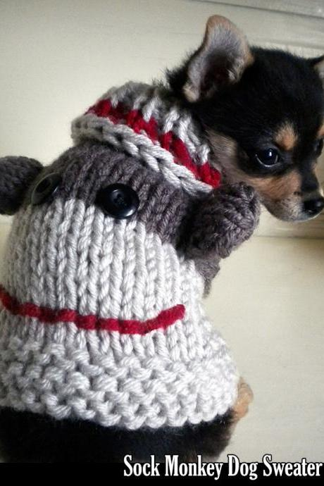Sock Monkey Dog Sweater Knitting Pattern